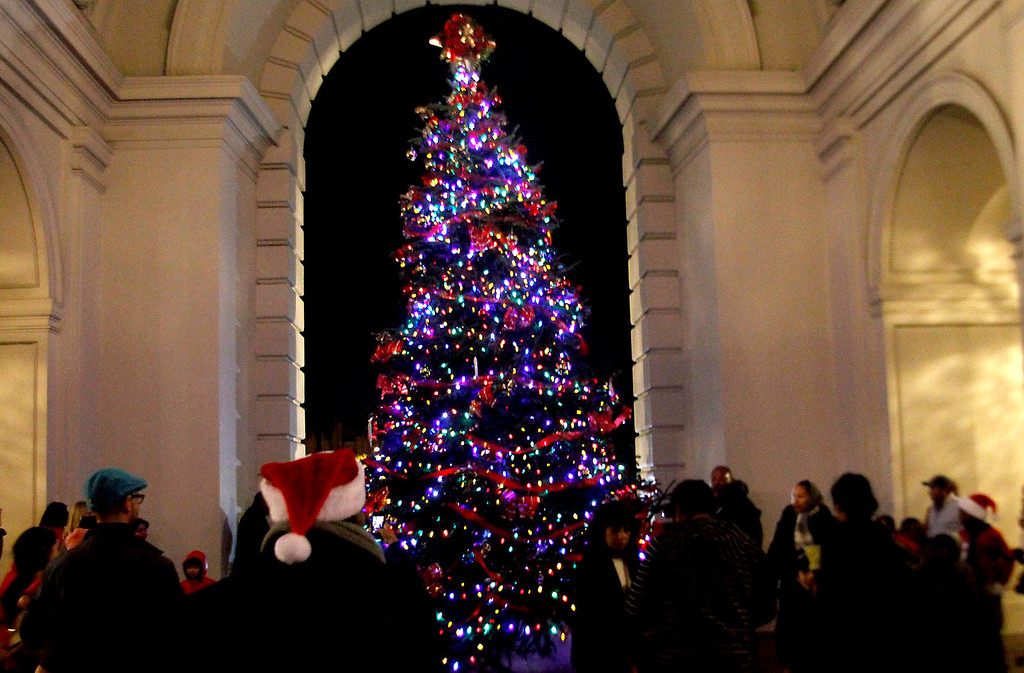 . Guests take pictures and admire Pasadena\'s annual Holiday Tree, during Pasadena Mayor Bill Bogaard Annual Holiday Tree Lighting event, at the Pasadena City Hall, in Pasadena, CA., Thursday, December 5, 2013. Pasadena\'s Tree Lighting event a free family celebration with local singers, art projects for kids and a special appearance by Santa Claus.  (Photo by James Carbone for the Pasadena Star News)