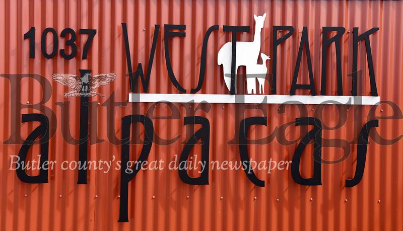 0911_SPE_Farm_Alpaca_1.jpg