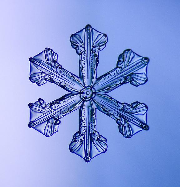 snowflake-5513-Edit.jpg