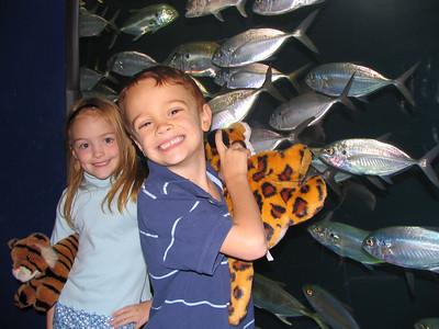 GA Aquarium April 2006