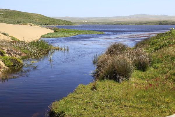 Field Biology Trip #7Abbotts Lagoon - Pt Reyes Nat'l Seashore