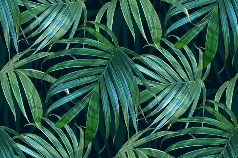 TropicalLeaves.png