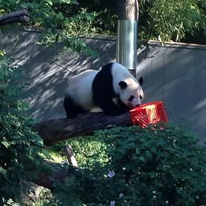 2015 Zoo Sept