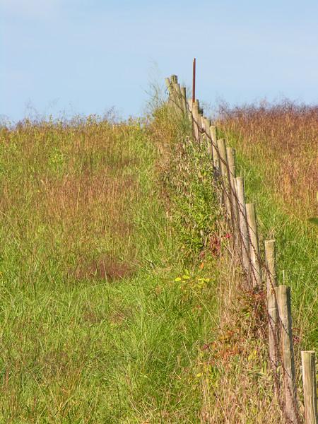Fall 2006 - Hwy 00 Fenceline