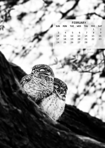 02_Bharatpur_1601_0129-PS-PS_5x7.jpg