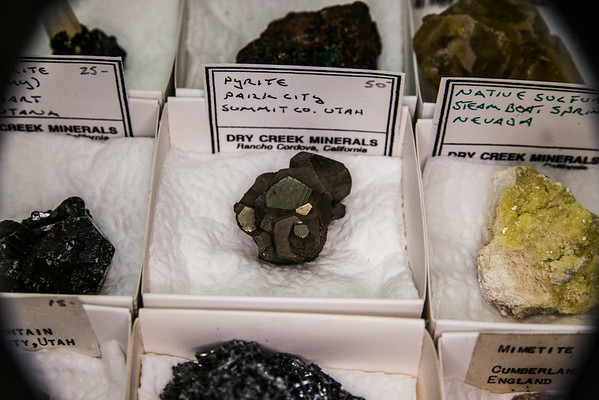 2014 SF Gem and Mineral Show