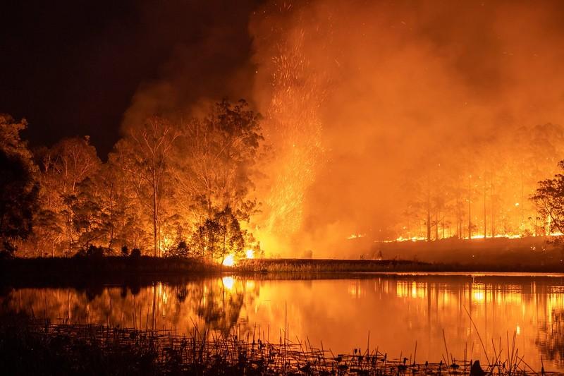 australia fire suicide.jpg
