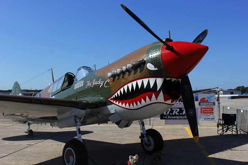 P-40-w-dogs_0067.jpg