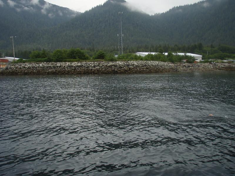 Alaska 2013 054.JPG