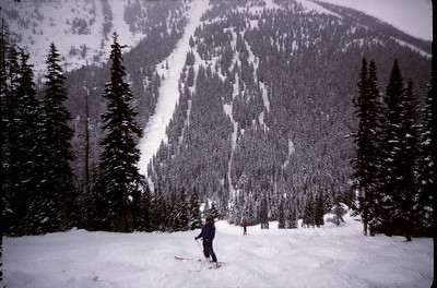 Revelstoke, British Columbia 1995