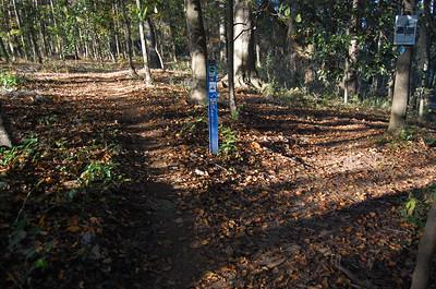 Loblolly Trail pre-2010