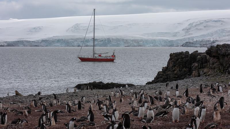 2019_01_Antarktis_01190.jpg