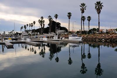 Anacapa, Channel Islands, California, January 14