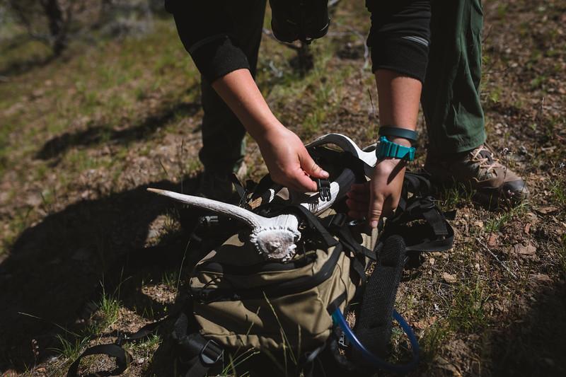 Malia Frame (@malia_f) shed hunting in Oregon.