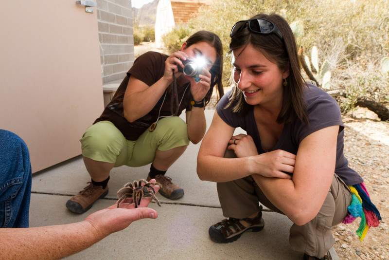 U Evky v práci - středisko ekologické výchovy - Camp Cooper aneb mazlení se s tarantulí.