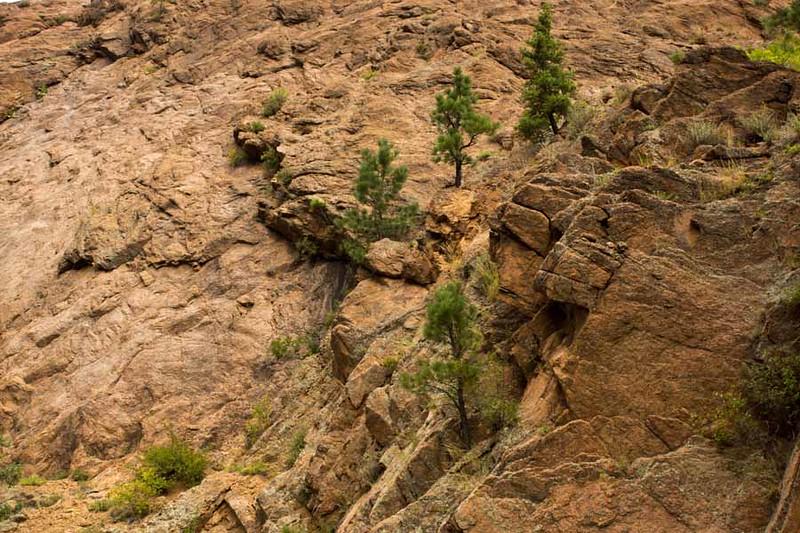 Colorado Springs-101.jpg