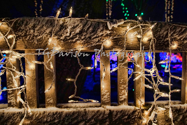 Janesville Rotary Garden Holiday Light Show 2018