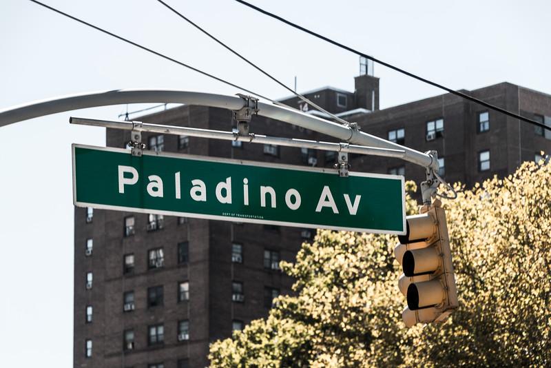 Paladino Avenue