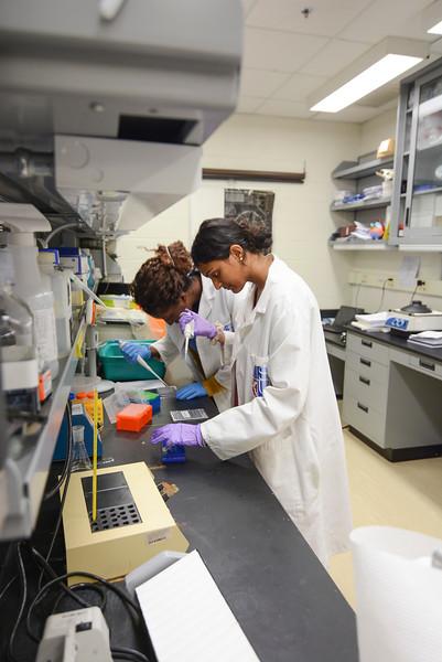 CHIRP 2019 labs022.JPG