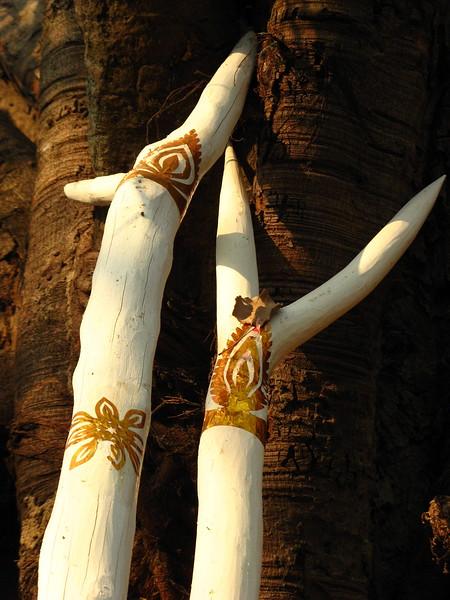 Tree at Wieng Khum Kham