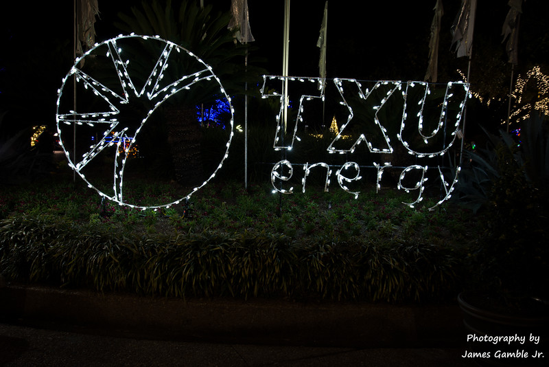 Houston-Zoo-Lights-2839.jpg