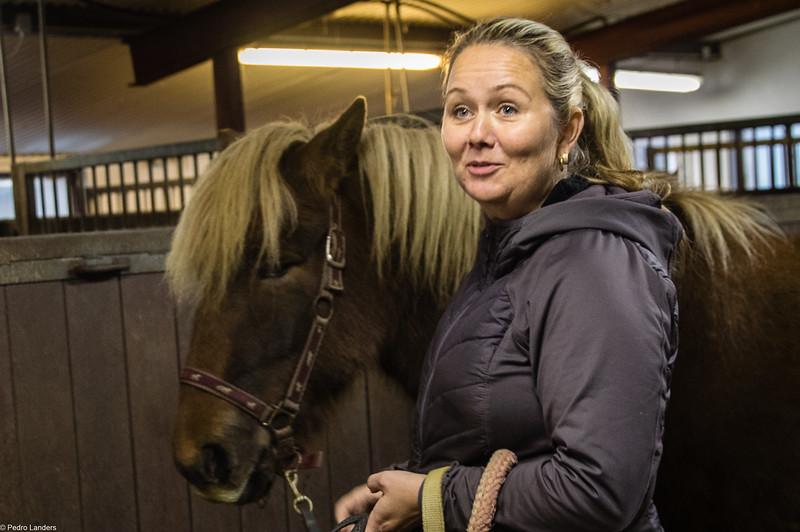 Solvangur Icelandic Horse Center.jpg