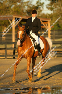AnneKaufman*&Pegasus Pure Gold1!