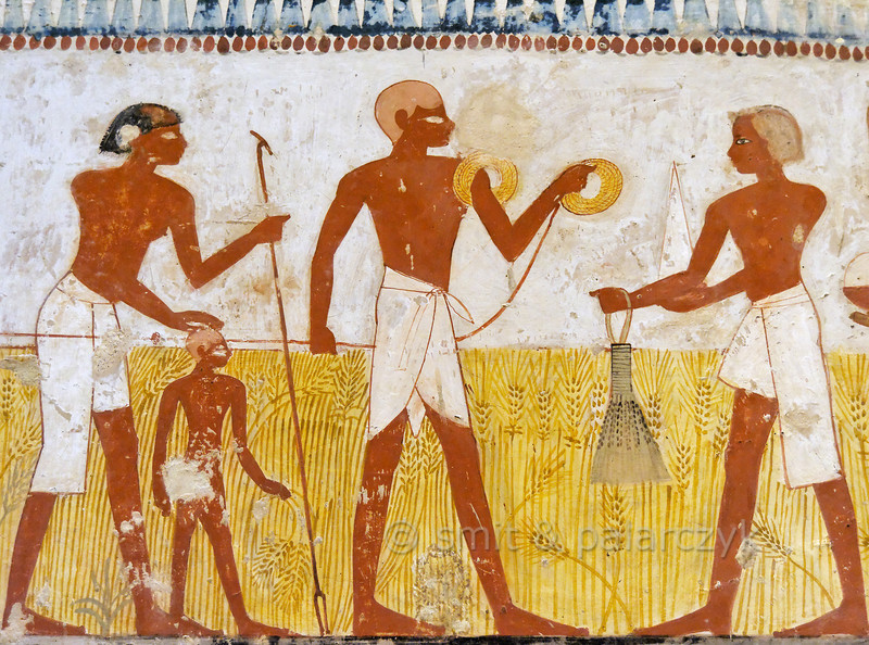[EGYPT 29325]