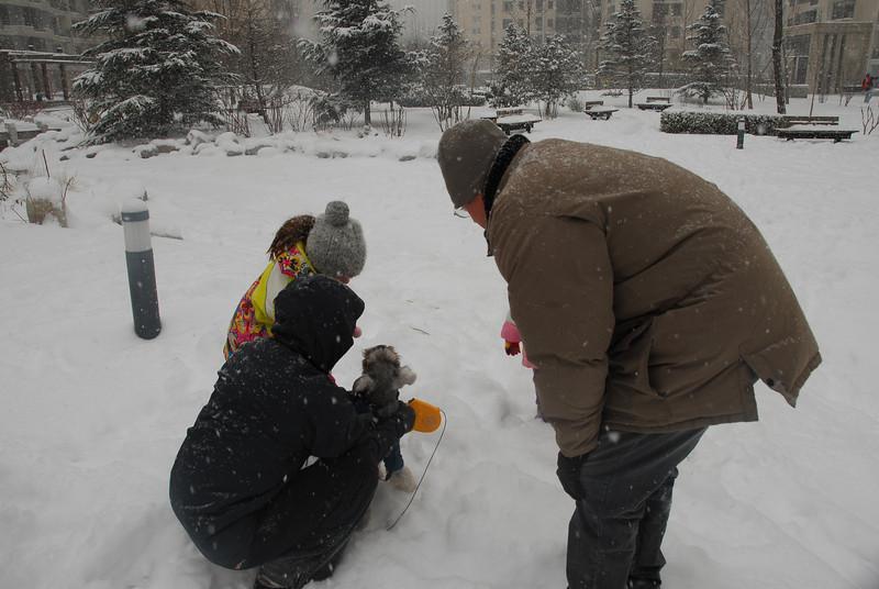 [20100103] 1st 2010 Snow in Beijing (72).JPG
