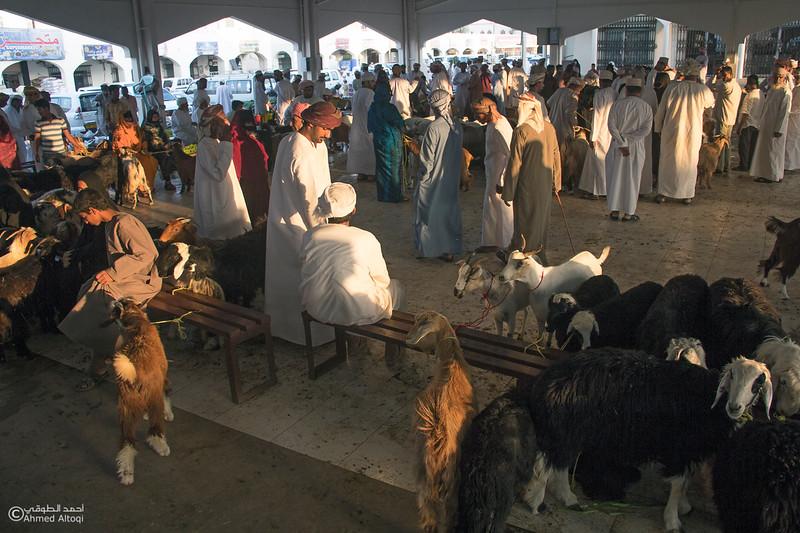 Traditional market (113)- Oman.jpg
