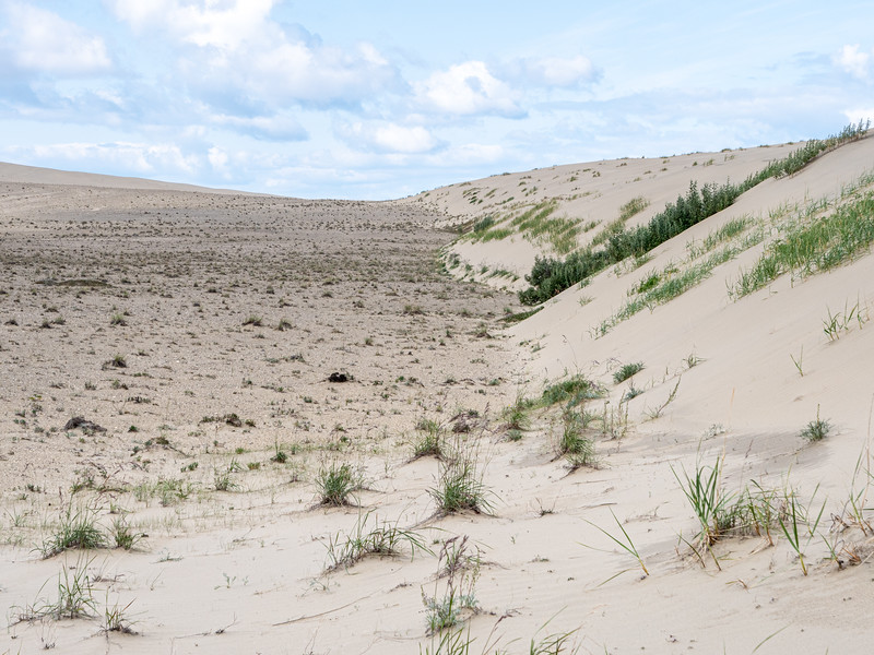 Advancing Dunes