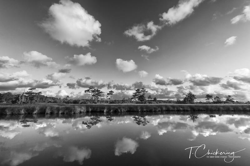 Roanoke Marsh-1536180151609.jpg
