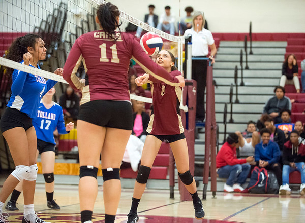 10/10/19 Wesley Bunnell | StaffrrNew Britain girls volleyball vs Tolland at New Britain High School on Thursday evening. Maleah Echevarria (8).