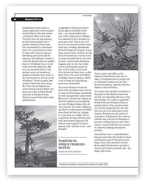 Sasquatch page 3.jpg