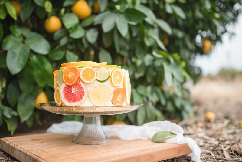 Citrus Styled Shoot (111 of 120).jpg