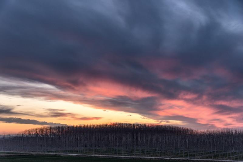 Evening Twilight - Castelnovo di Sotto, Reggio Emilia, Italy - March 2, 2019