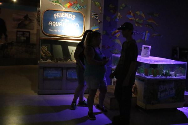 Florida Dolphin Tales 3-'15 *3