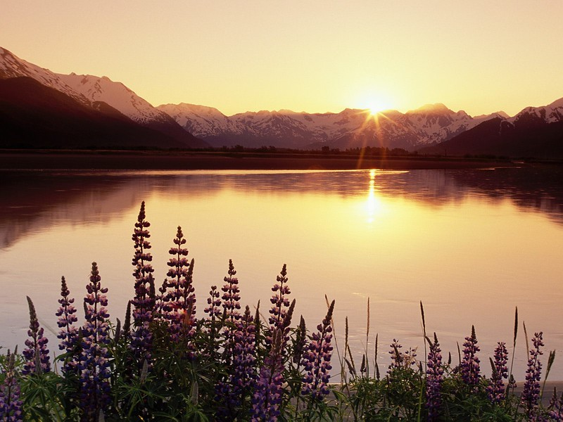 Turnagain Arm, Chugach State Park, Alaska.jpg