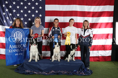 AKC World Team Tryouts 2019