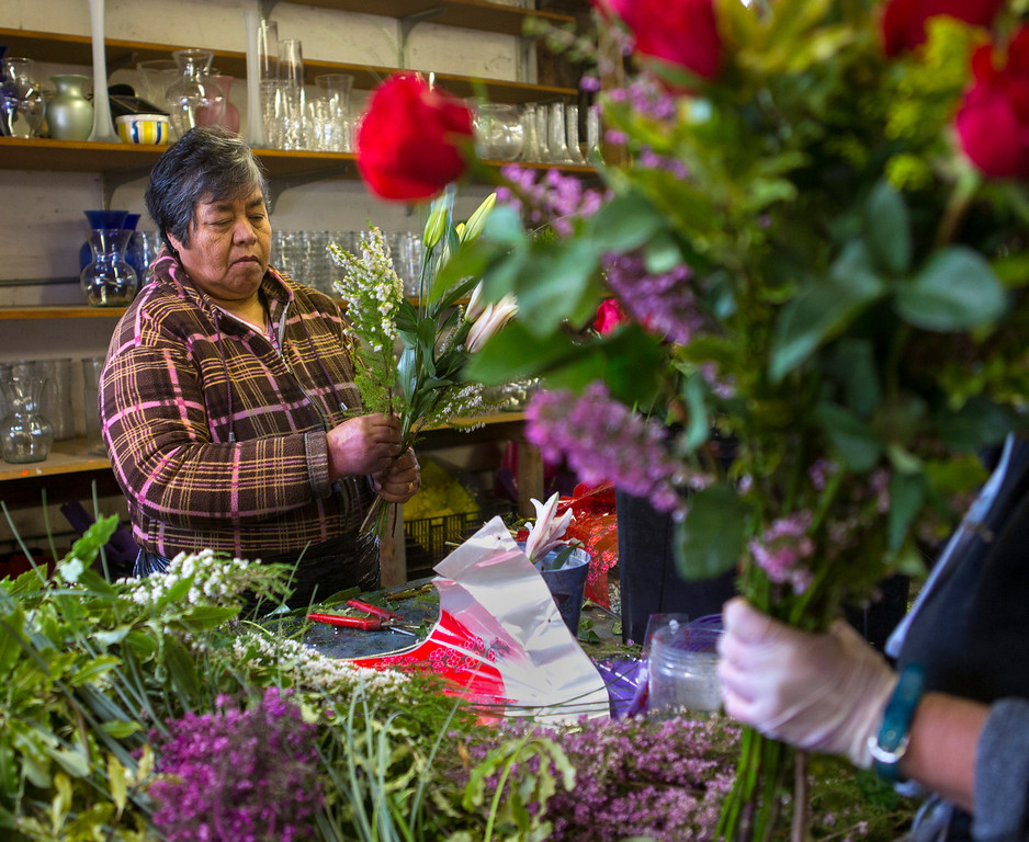 . Thelma Gonzalez prepares a bouquet of flowers for Valentines day at Repetto\'s Greenhouse Florist and  in Half Moon Bay, Calif. on Wednesday, Feb. 13, 2013.