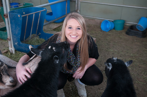 Farm_Emmy_Goat