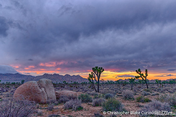 Sunset and Clouds - Joshua Tree