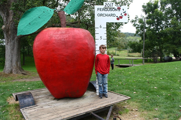 Luke and Connor Apple Orchard 2017