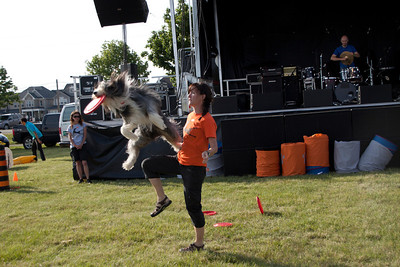 ON, Caledon Day - High Flying Canines