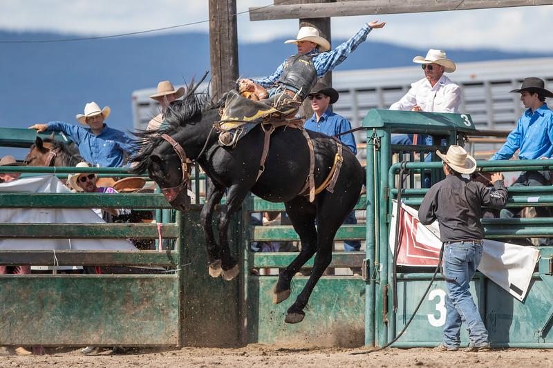 2019 Rodeo 2 (1378 of 1380).jpg