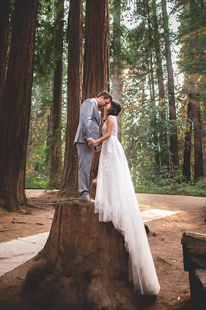 Yvette & Daniel Wedding Collection