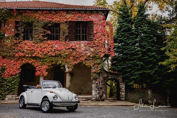 VW Beetle  - The weeding car