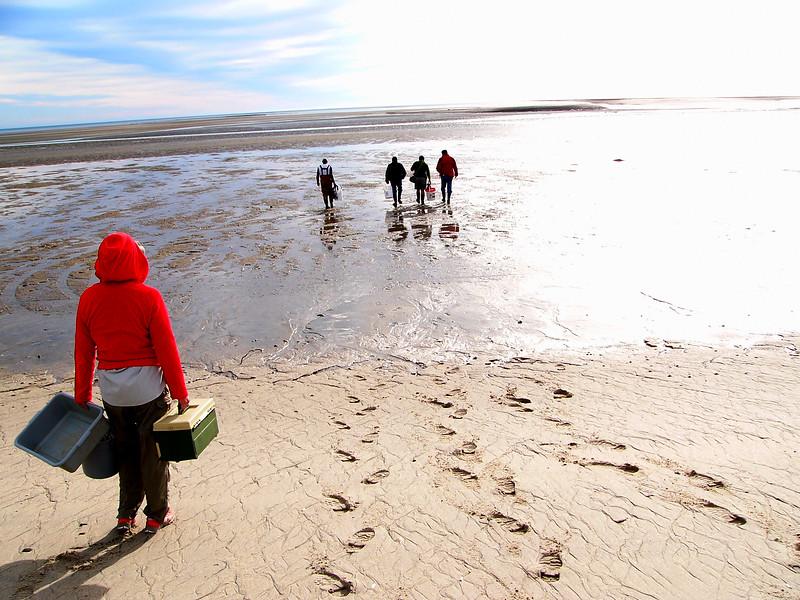 Intermareal Playa Sur LP.JPG