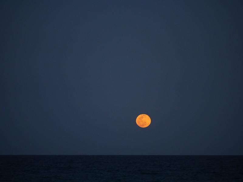 beach moonrise