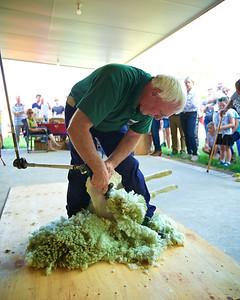 Shearing For Sarcoma~2015-10-10~5405